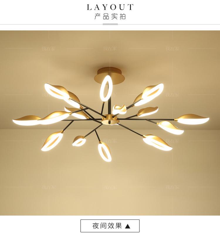 Austin Light系列轻奢风简约创意吊灯的详细介绍