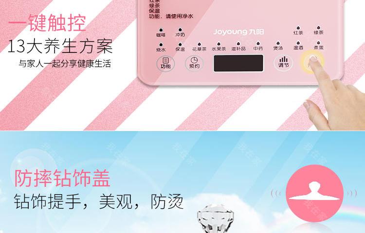 九阳品牌九阳微电脑触控养生壶的详细介绍