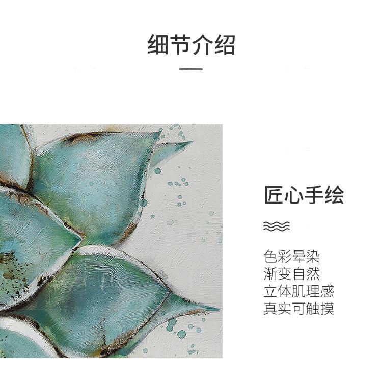 绘美映画系列露娜莲 清新多肉挂画的详细介绍