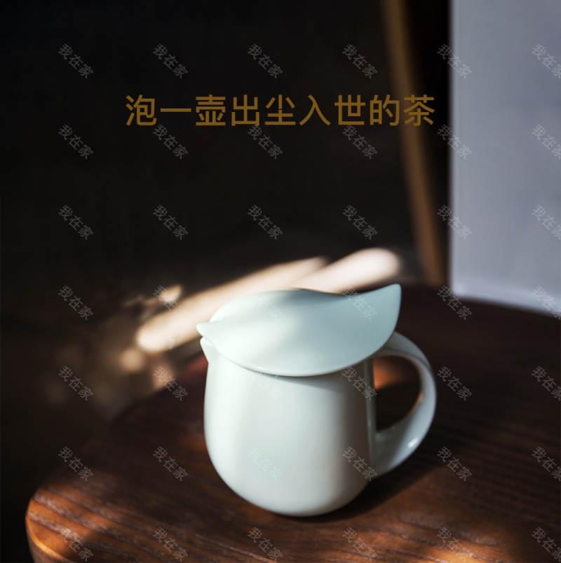 质造品牌大肚杯壶带盖的详细介绍